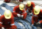 ILO Minimum Wage for Seafarers